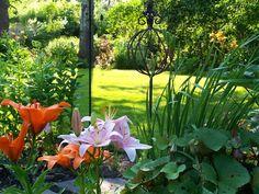 Beautiful light in this garden