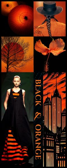 '' Black & Orange '' by Reyhan S.D.