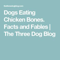 Dogs Eating Chicken Bones. Facts and Fables | The Three Dog Blog