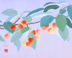 桜桃  2011年-13-野地美樹子