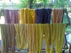 Solar Dyeing Wool