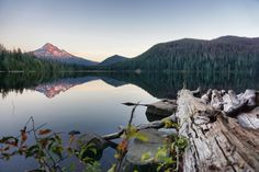 Lost Lake Loop Hike (Lakeshore Trail #656, Cascade Locks, OR 97014)  Lost Lake is a serene, secluded lake in the Mt Hood National Forest that reflects the mountain in it's picturesque waters. There's a wonderful 3.2 mile trail that loops around the lake so you can view it from 360 degrees.