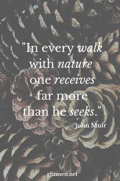 A favorite inspirational quote about the beauty around us - Metarnews Sites Hiking Quotes, Travel Quotes, Nature Quotes, Spiritual Quotes, Quotes About Nature, Inspirational Quotes For Women, Inspiring Quotes About Life, Find Quotes, Quotes To Live By