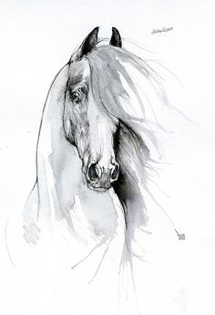 Horse Drawing - Friesian Horse 2019 09 06 by Angel Ciesniarska # Horse Drawings, Animal Drawings, Sketches Of Horses, Horse Face Drawing, Angel Drawing, Drawing Art, Eq Arte, Horse Artwork, Horse Paintings