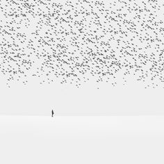 Regret by Hossein Zare on 500px