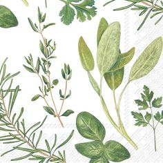 IHR Herbs Foliage Leaves Printed 3-Ply Paper Cocktail Beverage Napkins Wholesale C729500