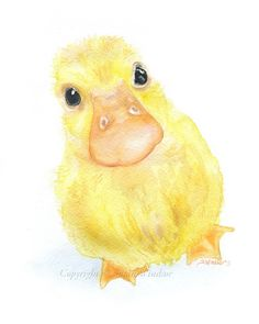 watercolor duck - Google Search