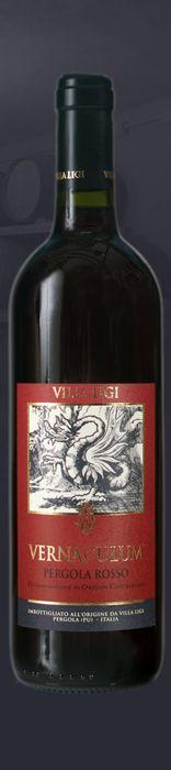 Vernaculum - Pergola Rosso DOC - red wine from Italian Marche Region