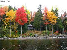 Fall Foliage, Moosehead Lake, Maine