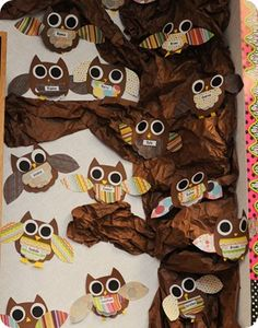 Habitats Unit - owl facts under chest feathers. When we do Owl pellets! Owl Bulletin Boards, Fall Crafts, Crafts For Kids, Owl Facts, First Grade Parade, Owl Theme Classroom, School Themes, School Ideas, Camping Theme