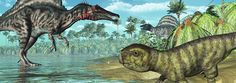 Solving the Missing Tropical Dinosaurs Mystery? | The Institute for Creation Research