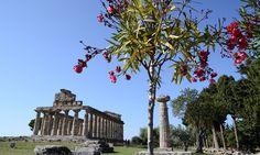 Franceschini: esteso Parco Archeologico Paestum
