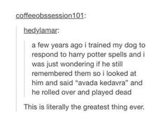 I will do this with my dog one day! #harrypotter