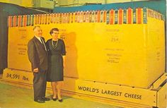 World's largest cheese…
