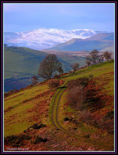 Berwyn, Cymru/Wales