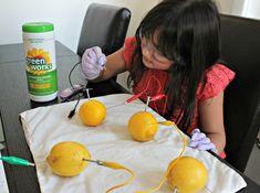 Como hacer una batería y generar energía con limones. Experimento para niños #NaturalPotential #ad @GreenWorks