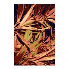Tropicana 1 Teppich Schönstaub Nadja, Nice Asses