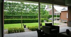 Klassieke tuin schaduwterras met dakplatanen garden landscape - Outdoor decoratie zwembad ...