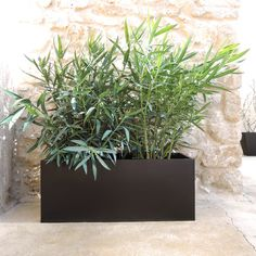 Jardinière en zinc noir mat à poser (4 tailles) decoclico Jardin : Decoclico