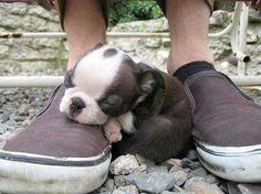 soooo exhausted....
