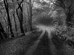 Road less traveled - Peak Valley Road B | Flickr - Photo Sharing!
