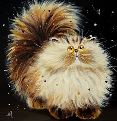 Kim Haskins kitten - Bob-copy