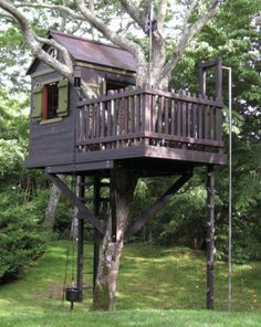 Deck around trunk...fireman pole...tree house