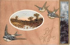 "Vintage 1900 Embossed Postcard Robins ""Best Wishes"" New #123 #BestWishes"