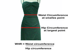 Waist to Hip ratio: Some researchers have found that the waist-hip ratio (WHR) is a significant measure of female attractiveness. Women with a 0.7 WHR are usually rated as more attractive by men from European cultures. Such diverse beauty icons as Audrey Hepburn, Marilyn Monroe, Sophia Loren, Jessica Alba, Salma Hayek and even the Venus de Milo all have or had ratios close to 0.7, even though they all have different weights and heights. #tips #facts