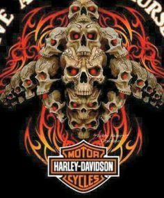 Have a great Thursday Harley Davidson Glasses, Harley Davidson Quotes, Harley Davidson Tattoos, Harley Davidson Pictures, Harley Davidson Wallpaper, Harley Davidson T Shirts, Motorcycle Logo, Motorcycle Style, Motorcycle Quotes