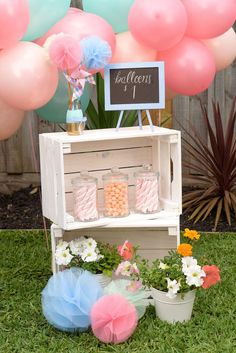 Pastel County Fair Themed Birthday Party