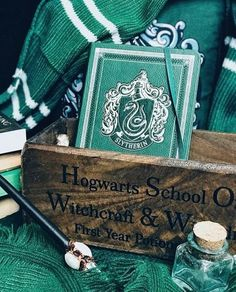 Mode Harry Potter, Harry Potter Bedroom, Slytherin Harry Potter, Slytherin House, Slytherin Pride, Slytherin Aesthetic, Harry Potter Movies, Harry Potter World, Hogwarts Houses