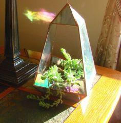 Stained Glass Terrarium
