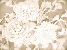 #paper flowers