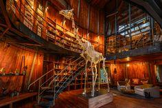 Museum at Jao Camp, Botswana