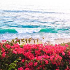 stylishblogger:What a beautiful Sunday! #sundayfunday #fathersday #ocean #view by @stylishpetite