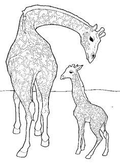 Together Giraffe Son