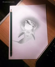 3D Pencil Drawings and 3D Art works.
