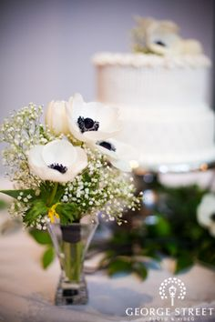 white and red anemones with black centers and baby's breath. Perhaps one each in the men's and women's restrooms.