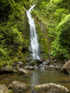 Lulumahu Falls, Lulumahu Valley, Nuuanau, Oahu, Hawaii. #waterfall