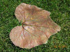Concrete Squash Leaf by LindasYardArt on Etsy, $25.00