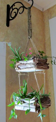 Driftwood Hanging Planter - Double Edition, Hanging Planter, Driftwood Planter, Coastal Decor, Driftwoood Hanging Art - Treasury Item on Etsy, $49.09