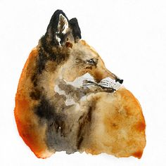 This is the original watercolor illustration of the Fox. The illustration will be sent in a plastic sleeve in a sturdy cardboard envelop.The illustration is not framed.
