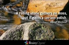 A rolling stone gathers no moss, but it gains a certain polish. - Oliver Herford