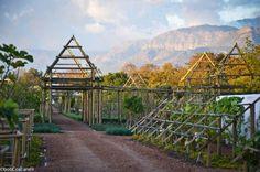 babylonstoren south africa | babylonstoren, south africa