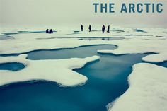 """Of all the truly wild places left on earth none are as majestic as the Arctic."" -To The Arctic"