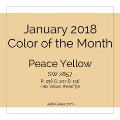 It's a year to shine and be Intuitively Vibrant, so let's start with a month where we zoom in on:  What fits those themes in each area of your Kaleidoscope AND Who will support you the most.  Learn more about what to expect this month by checking out your January 2018 forecast below. Wondering where these forecasts come from? They easily flow from a blend of several methods & practices I use nearly every single day, such as energy healing, Divine & angelic guidance and color theor
