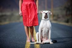 Arty photos of your dog to frame for walls
