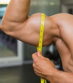 Muscle Building Tips. Gain More Mass With These Weight Training Tips! It can be fun to lift weights if you do it safely and correctly. You can enjoy yourself and see the progress of an effective workout routine. Types Of Muscles, Muscles In Your Body, Major Muscles, Muscle Mass, Gain Muscle, Build Muscle, Weight Training, Training Tips