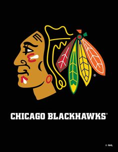 Chicago Black Hawks... Kicking some 5th game ass!  Shipping a Rona